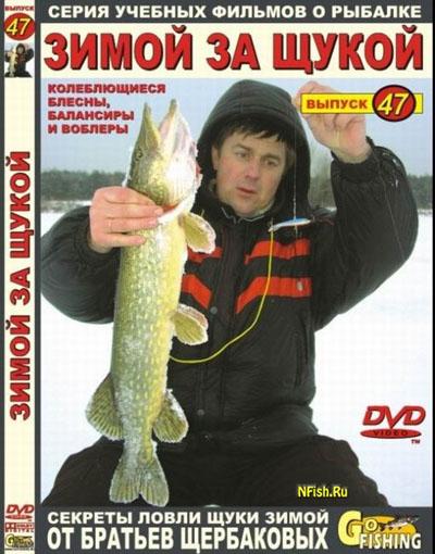братья щербаковы уроки рыболова