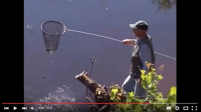 рыбачьте с нами фидер